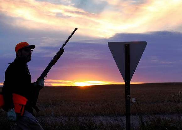 141015 PLOTS hunting