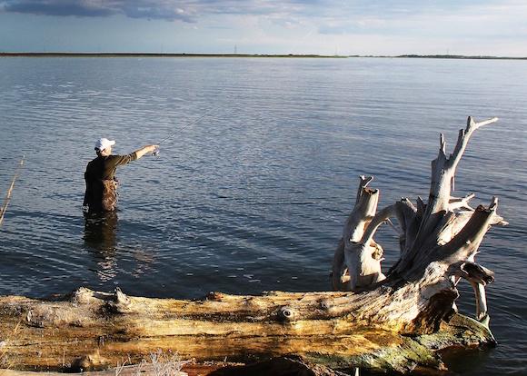 150107 good fishing
