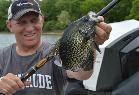 Clear Lake Crappie