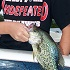 Falling for Panfish