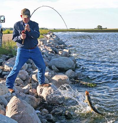 Fishing Highlights 2016