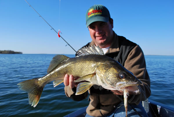 Live Bait Rigs for Walleyes