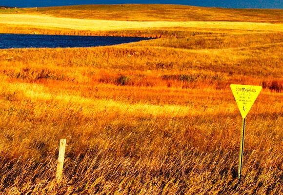 North-Dakota-PLOTS
