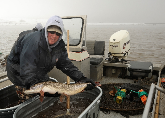 Early Pike Spawning